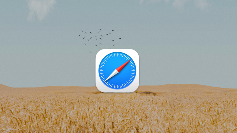 Steps To Get and Activate Safari Extensions on iPhone and iPad, WPFaqhub